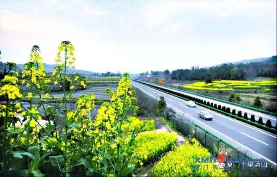 十里蓝山:集灌路网升级 区域发展新时代